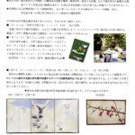 北辰の森・アート通信 第1号